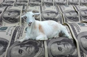 A szegény ember és a kecske